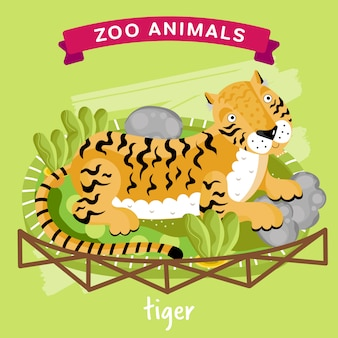 Zoo animal, tiger