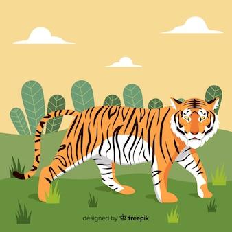Zwiedzanie tygrysa tle