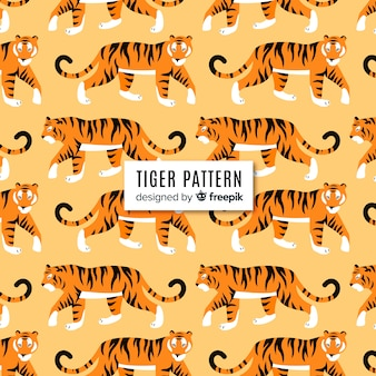 Zwiedzanie wzór tygrysa
