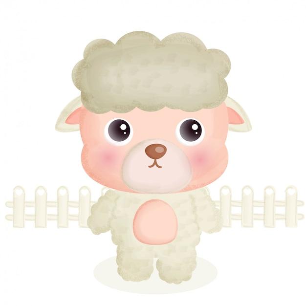 Zwierząt gospodarskich z cute owiec.