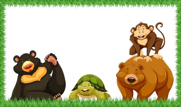 Zwierzę w ramce z trawą