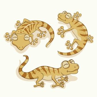 Zwierzęta gekon cartoon jaszczurka