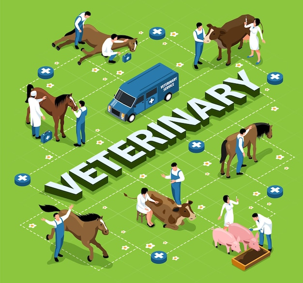 Zwierzęta Gospodarskie Inwentarz Weterynaryjny Izometryczny Infografika Schemat Blokowy Z Weterynarzami Badającymi Leczenie Chorych Koni Krowy świnie Ilustracja Darmowych Wektorów