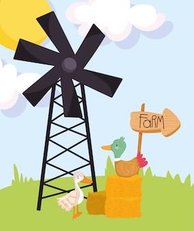 Zwierzęta gospodarskie kaczka w siano i gęś wiatrak trawa kreskówka
