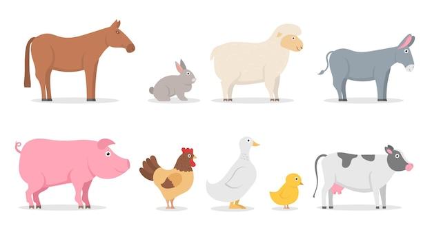 Zwierzęta gospodarskie świnia kaczka królik owca osioł krowa koń kogut kurczak gęś płaskie postacie