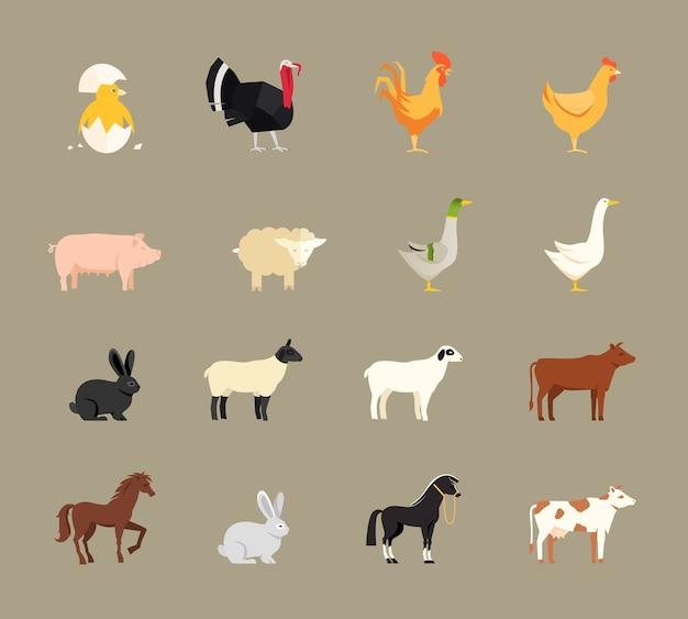 Zwierzęta gospodarskie ustawione w stylu płaski wektor