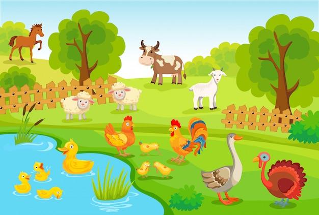 Zwierzęta hodowlane