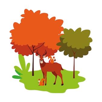 Zwierzęta jelenia i wiewiórki na charakter