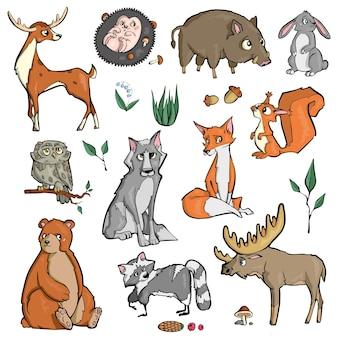 Zwierzęta leśne na białym tle słodkie kreskówki