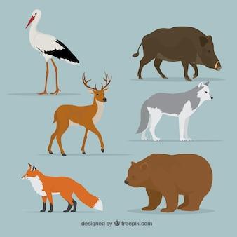 Zwierzęta leśne ustawione w realistycznym stylu