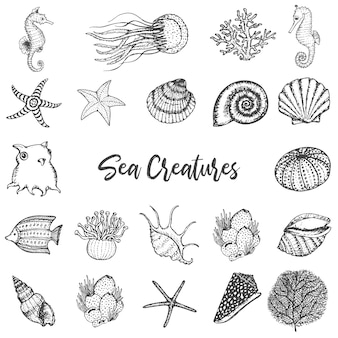 Zwierzęta morskie i stworzenia ręcznie rysowane vintage zestaw.