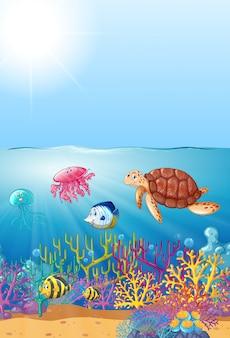 Zwierzęta morskie pływające pod morzem