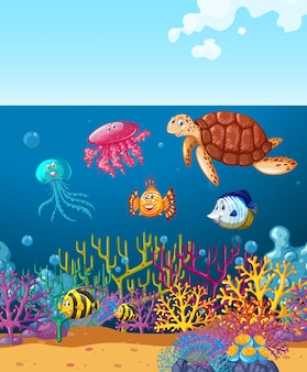 Zwierzęta morskie pływające pod oceanem