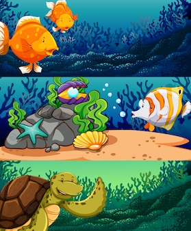 Zwierzęta morskie pod oceanem
