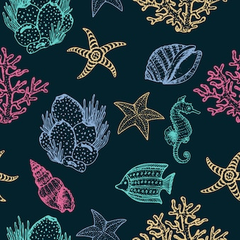 Zwierzęta morskie, rozgwiazdy i kogut muszle ręcznie rysowane wzór.