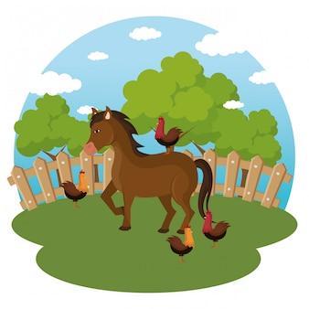 Zwierzęta na scenie rolniczej