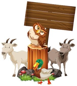 Zwierzęta przy drewnianym znaku