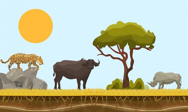 Zwierzęta sawanny w afryce wektor krajobraz z baobabem i pod warstwą powierzchni ziemi, byka, geparda i nosorożca. ilustracja zwierząt sawanny. wildlife of africa.