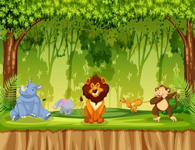 Zwierzęta w scenie dżungli