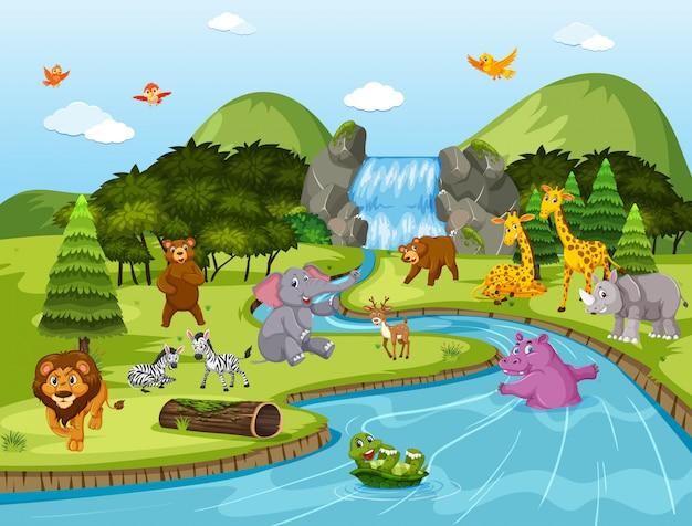 Zwierzęta w scenie wodospadu