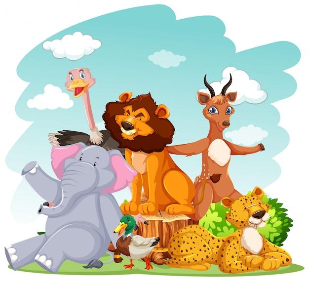 Zwierzęta w zoo na tle dzikiej przyrody
