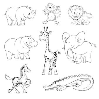 Zwierzęta z safari i dżungli