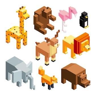 Zwierzęta zabawkowe 3d, zdjęcia izometryczne izolują