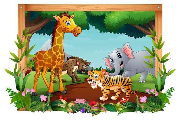Zwierzęta znajdują się w krajobrazie lasu