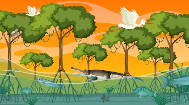 Zwierzęta żyją W Lesie Namorzynowym O Zachodzie Słońca Premium Wektorów