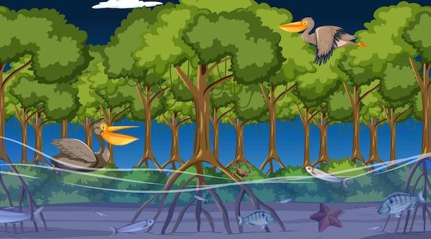 Zwierzęta żyją w lesie namorzynowym w nocnej scenie