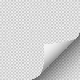 Zwinięty róg papieru.