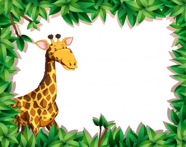 Żyrafa w ramie liści