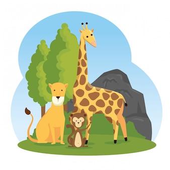 Żyrafa z rezerwą dzikich zwierząt lwa i małpy