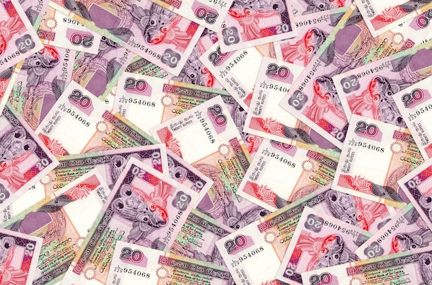 20 rupii lankijskich leży na stosie. ściana koncepcyjna bogatego życia. dużo pieniędzy