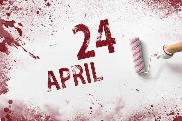 24 kwietnia. 24 dzień miesiąca, data kalendarzowa. ręka trzyma wałek z czerwoną farbą i pisze datę w kalendarzu na białym tle. miesiąc wiosny, koncepcja dnia roku.