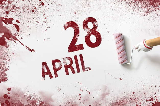 28 kwietnia. 28 dzień miesiąca, data kalendarzowa. ręka trzyma wałek z czerwoną farbą i pisze datę w kalendarzu na białym tle. miesiąc wiosny, koncepcja dnia roku.