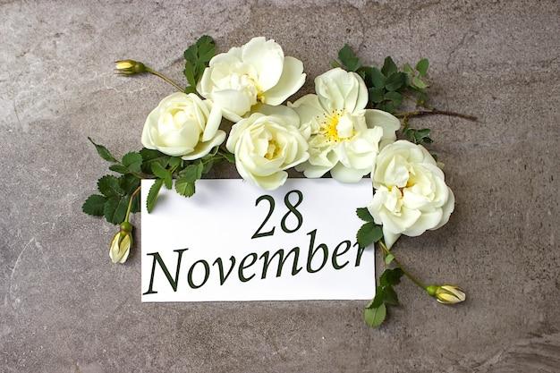 28 listopada. 28 dzień miesiąca, data kalendarzowa. białe róże obramowania na pastelowym szarym tle z datą kalendarzową. jesienny miesiąc, koncepcja dnia roku.