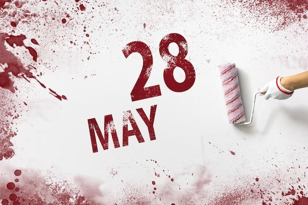 28 maja. 28 dzień miesiąca, data kalendarzowa. ręka trzyma wałek z czerwoną farbą i pisze datę w kalendarzu na białym tle. miesiąc wiosny, koncepcja dnia roku.