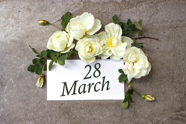 28 marca. 28 dzień miesiąca, data kalendarzowa. białe róże obramowania na pastelowym szarym tle z datą kalendarzową. miesiąc wiosny, koncepcja dnia roku.