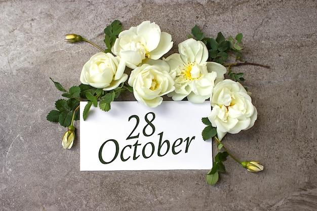 28 października. 28 dzień miesiąca, data kalendarzowa. białe róże obramowania na pastelowym szarym tle z datą kalendarzową. jesienny miesiąc, koncepcja dnia roku.