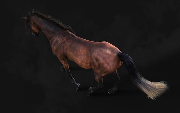 3d ilustracja przystojny brązowy koń pozuje długą grzywę na ciemnym tle ze ścieżką przycinającą