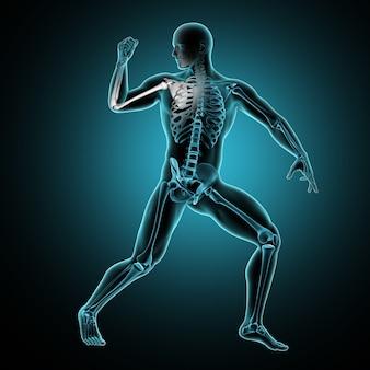 3d męskiej postaci medycznej z podnoszonym ramieniem i kości podświetlone
