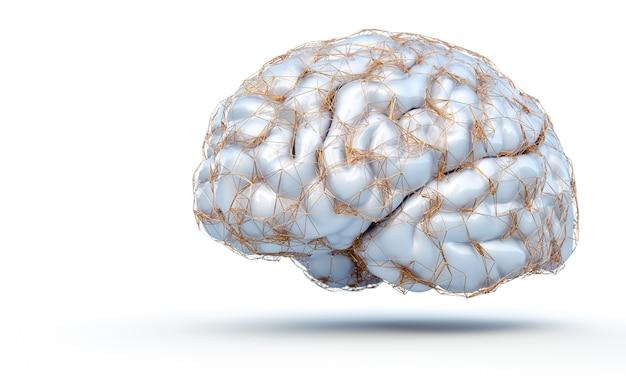 3d render ludzkiego mózgu ze złotą strukturą, która wyświetla połączenia nerwowe na białym tle
