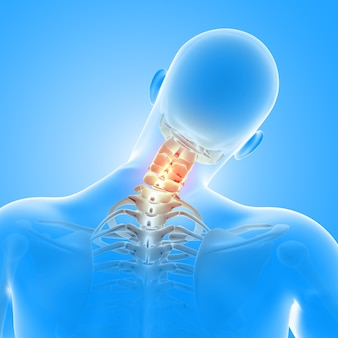 3d render medycznej postaci męskiej z podświetlonymi kościami szyi