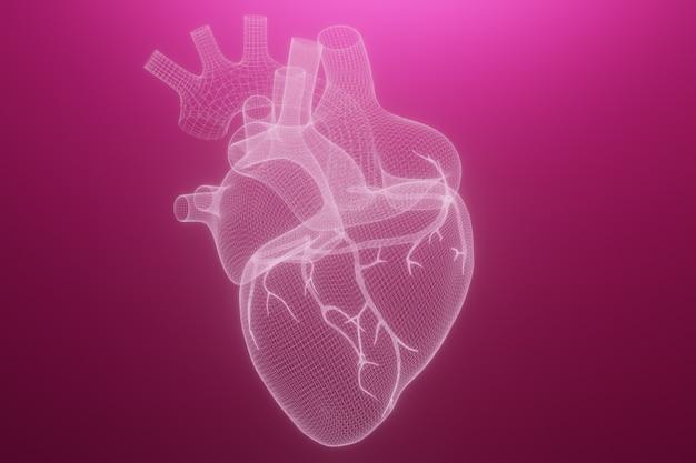 3d szkieletu serca renderowania na białym tle