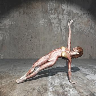 3d żeńska postać z mięsień mapą w joga pozyci w grunge pokoju