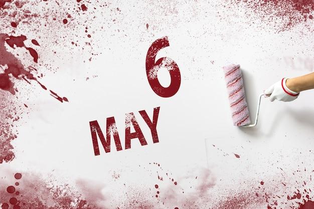 6 maja. dzień 6 miesiąca, data kalendarzowa. ręka trzyma wałek z czerwoną farbą i pisze datę w kalendarzu na białym tle. miesiąc wiosny, koncepcja dnia roku.