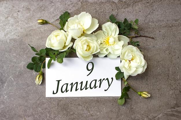 9 stycznia. dzień 9 miesiąca, data kalendarzowa. białe róże obramowania na pastelowym szarym tle z datą kalendarzową. miesiąc zimowy, koncepcja dnia roku.