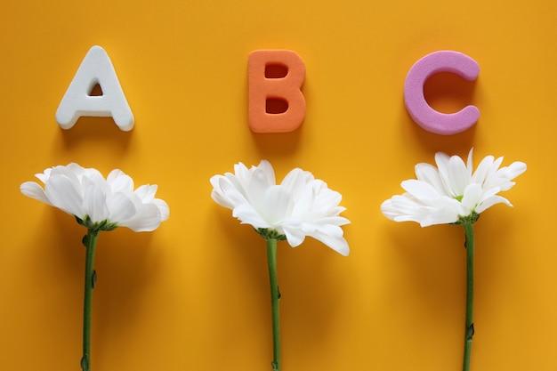 Abc - pierwsze litery alfabetu angielskiego i trzy białe chryzantemy na żółtym tle