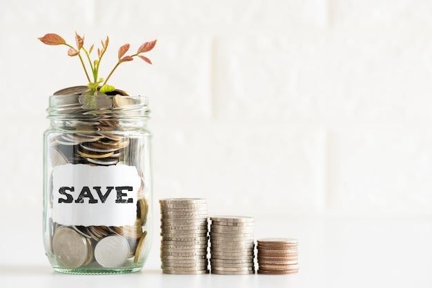 Abstrakcjonistycznego pieniądze oszczędzania mały młody drzewo z szklanymi słój monetami z zapisać tekst